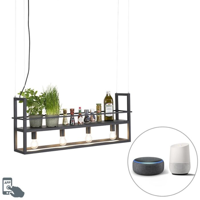 Smart-hanging-lamp-black-incl.-WiFi-A60-light-sources---Cage-Rack