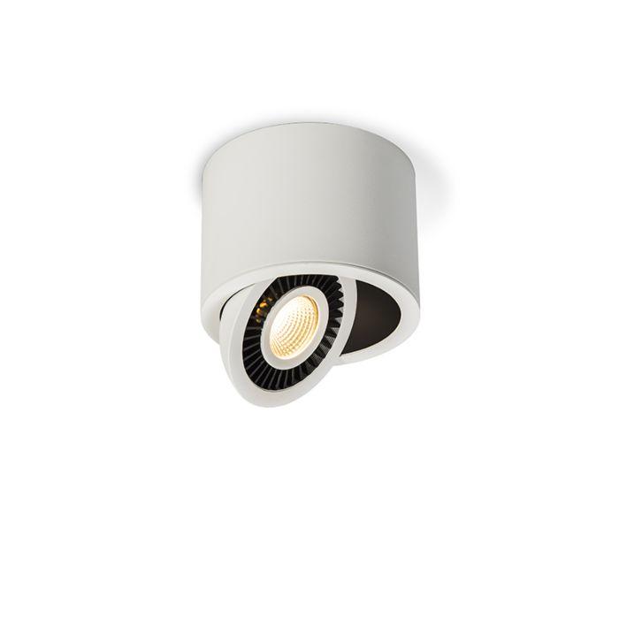 Spotlight-Cosmos-1-White