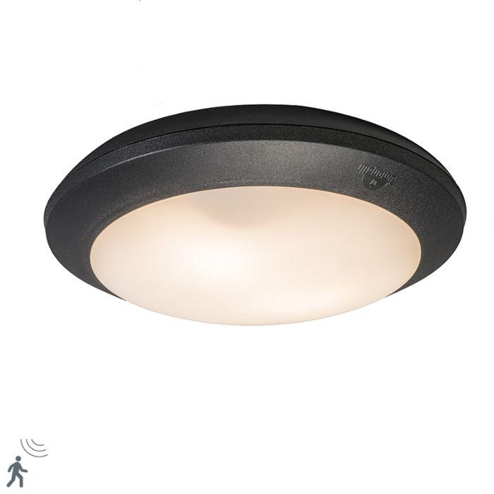 Ceiling-Lamp-Black-with-Sensors-IP65---Umberta