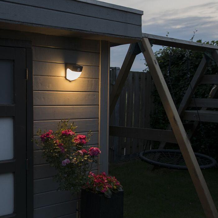 Scout-Solar-LED-Dark-Grey