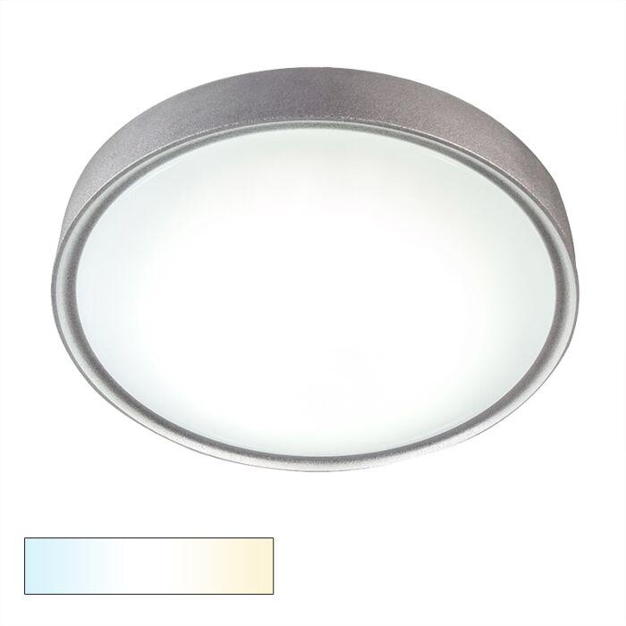 Ceiling-Lamp-Avanti-II-18W-LED-Silver