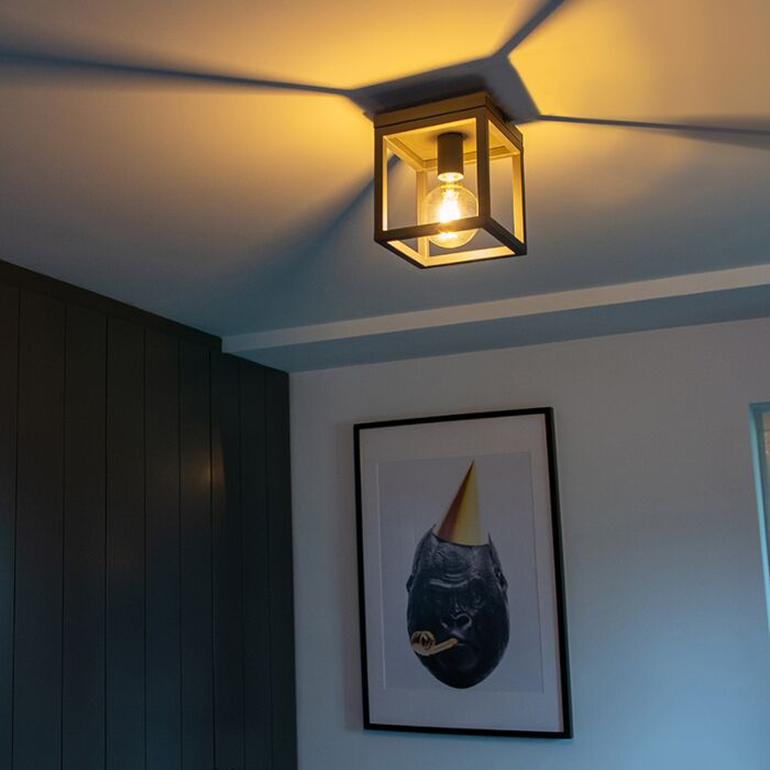 Industrial-ceiling-lamp-anthracite---Cage-1