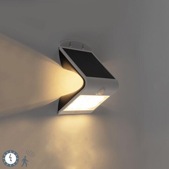 Spotlight-white-incl.-LED-with-motion-sensor-IP65-solar---Daya