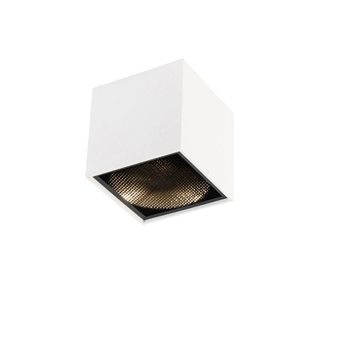 Design-spot-white---Box-Honey