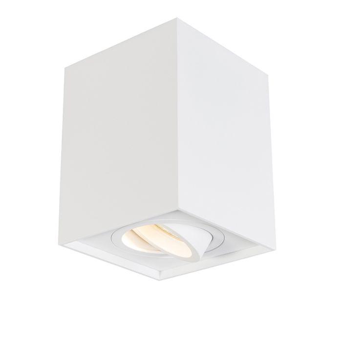 Spot-white-adjustable---Quadro-1-up