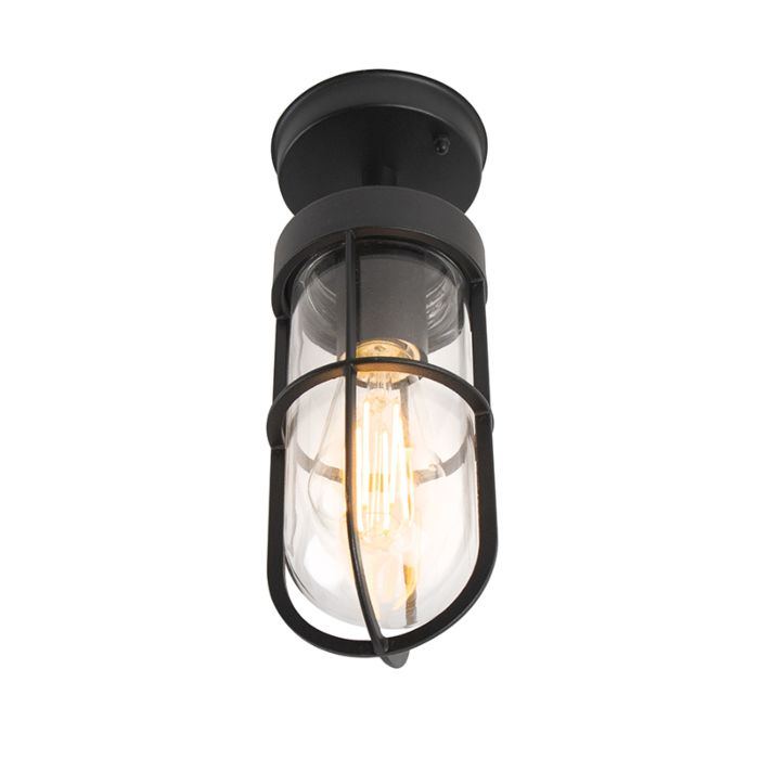 Country-exterior-ceiling-lamp-black-with-glass---Elza